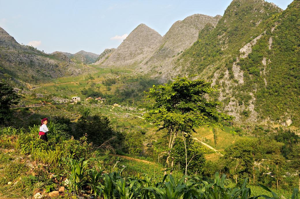Montagnes entre Hà Giang et Dong Van, Vietnam
