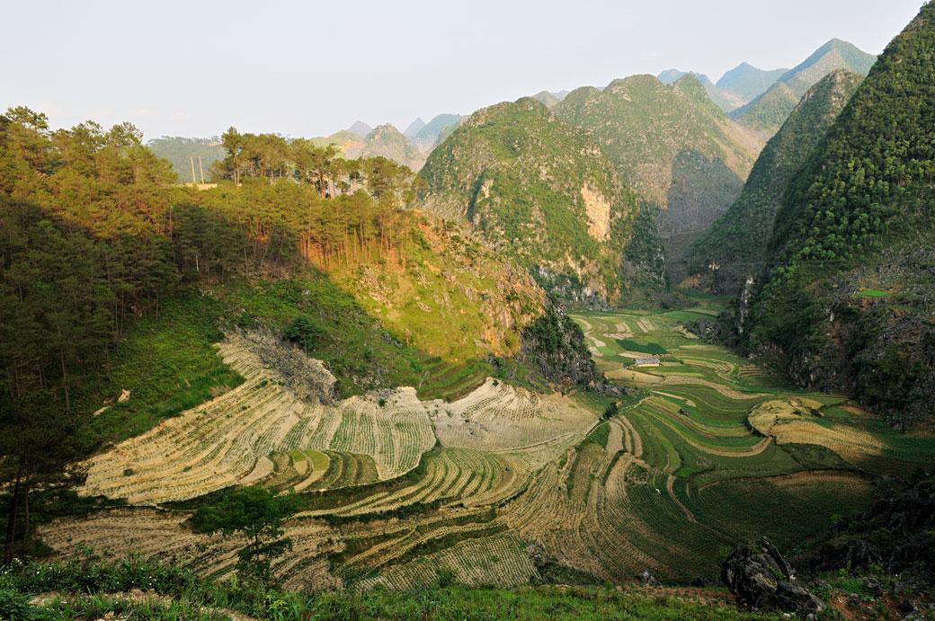 Culture en terrasses et montagnes près de Dong Van, Vietnam