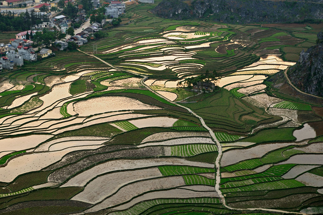 Rizières depuis la forteresse de Pu Lo à Dong Van, Vietnam