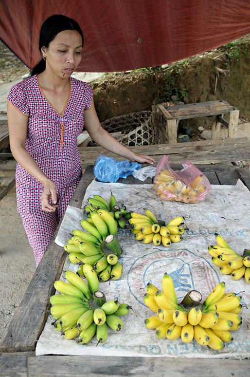 Vendeuse de bananes au bord de la route, Vietnam