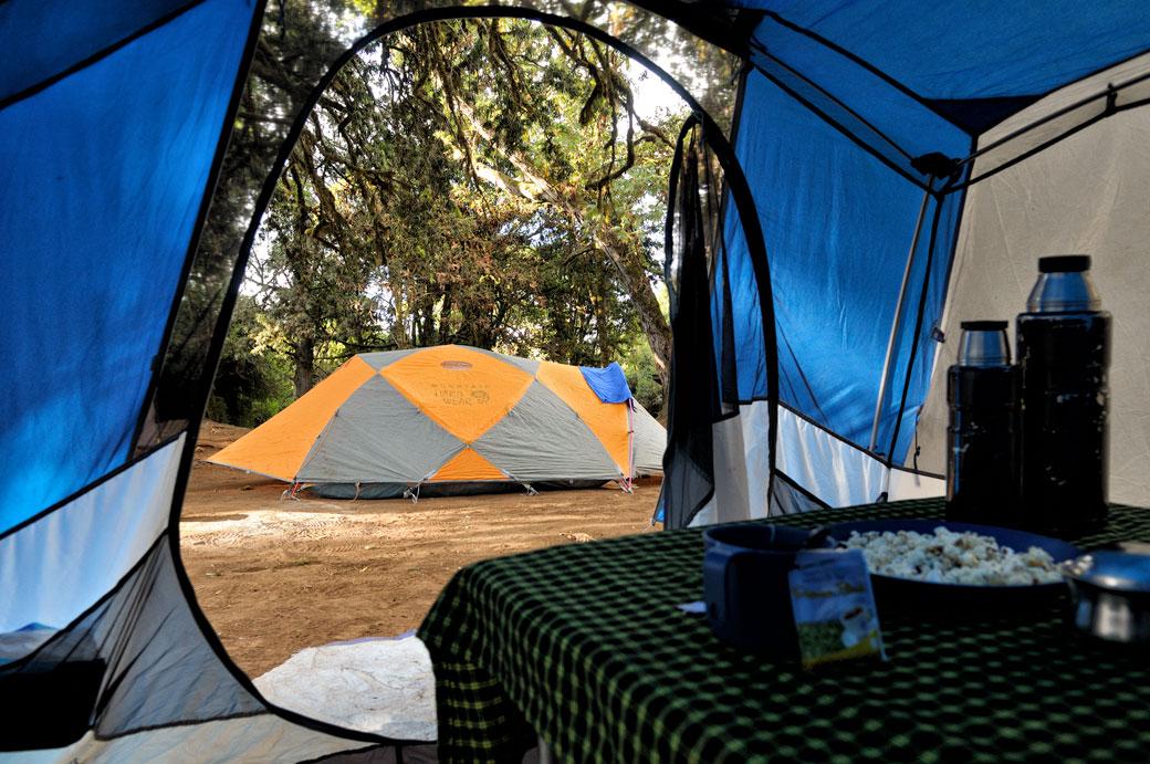 Tentes à Forest camp sur le Kilimandjaro, Tanzanie