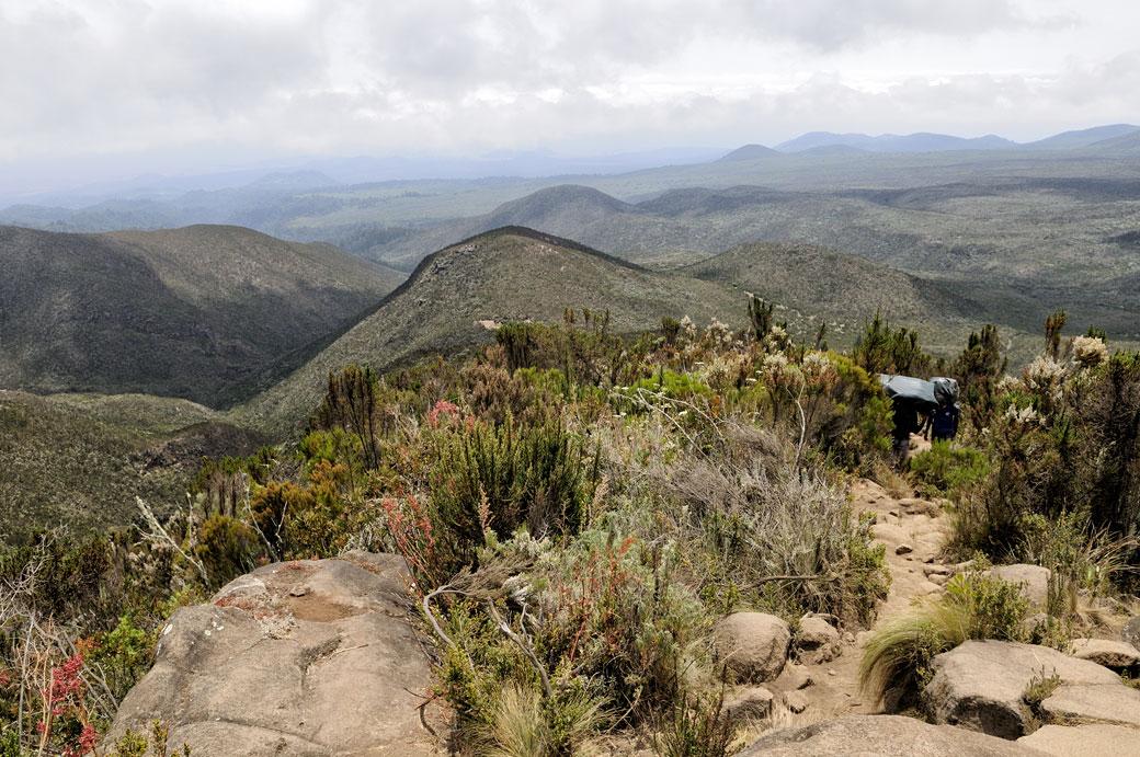 Les pentes inférieures du Kilimandjaro, Tanzanie