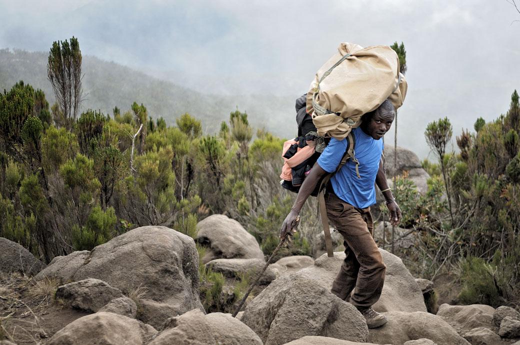 Porteur du Kilimandjaro près de Shira Ridge, Tanzanie