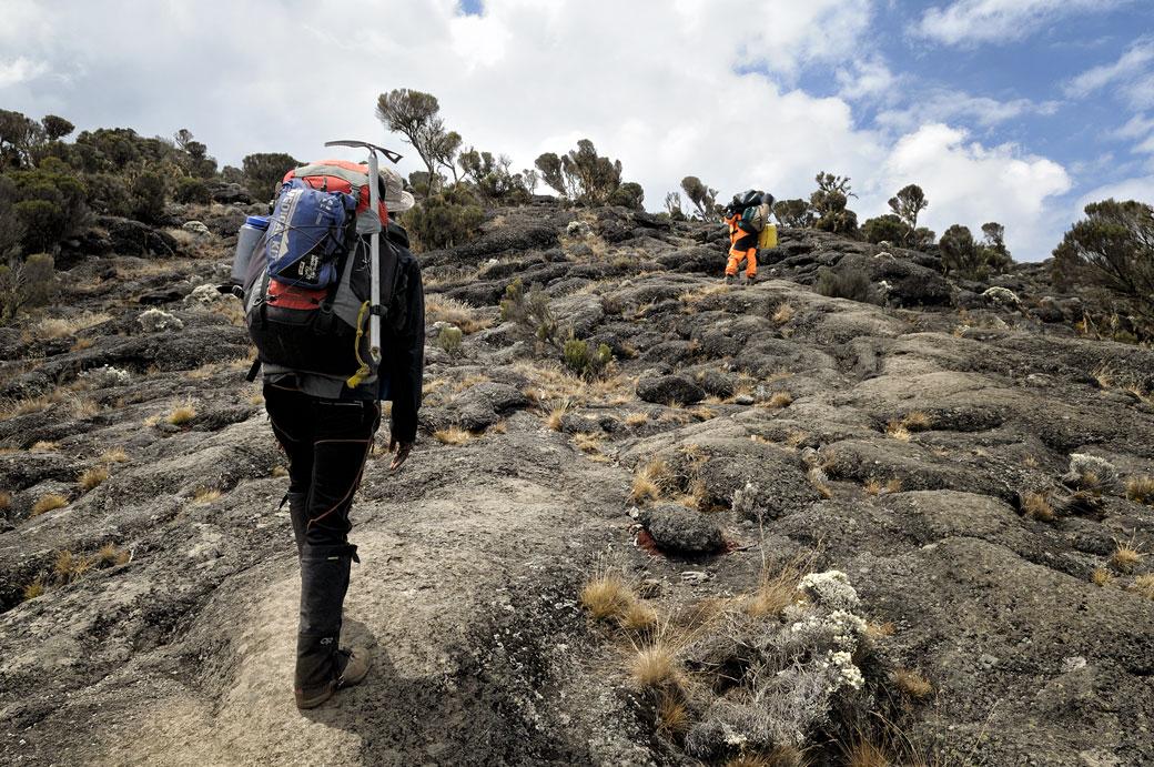 Guide et porteur en route pour Moir Hut camp sur le Kilimandjaro