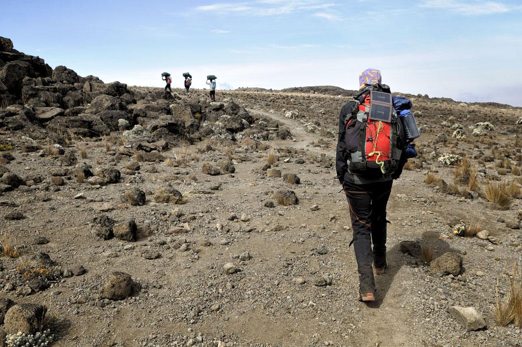 Guide et porteurs en route pour Lava Tower Camp, Tanzanie