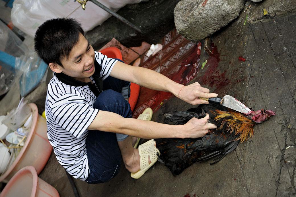 Jeune homme qui tue un poulet au marché de Meo Vac, Vietnam