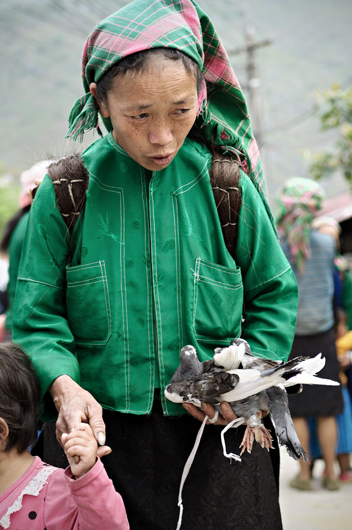 Femme qui tient un pigeon au marché de Meo Vac, Vietnam
