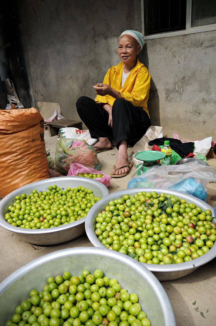 Vendeuse de fruits au nord du pays, Vietnam