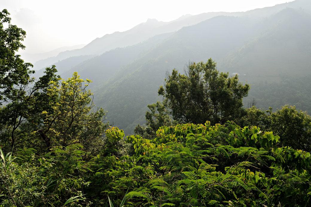 Montagnes verdoyantes au nord du pays, Vietnam