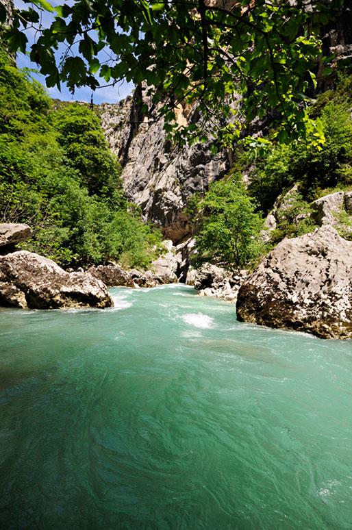 Au bord de la rivière dans les Gorges du Verdon, France