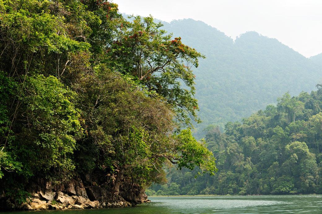 Montagnes et forêt dense au lac de Ba Be, Vietnam