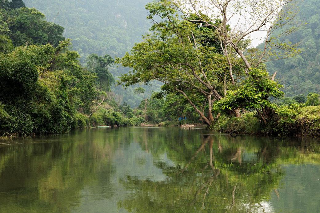 Montagnes et réflexion d'arbres au lac de Ba Be, Vietnam