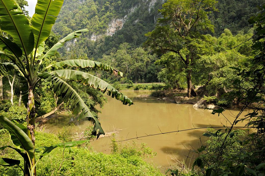 Cours d'eau dans le parc national de Ba Be, Vietnam