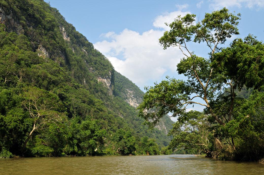 Forêt et rivière dans le parc national de Ba Be, Vietnam