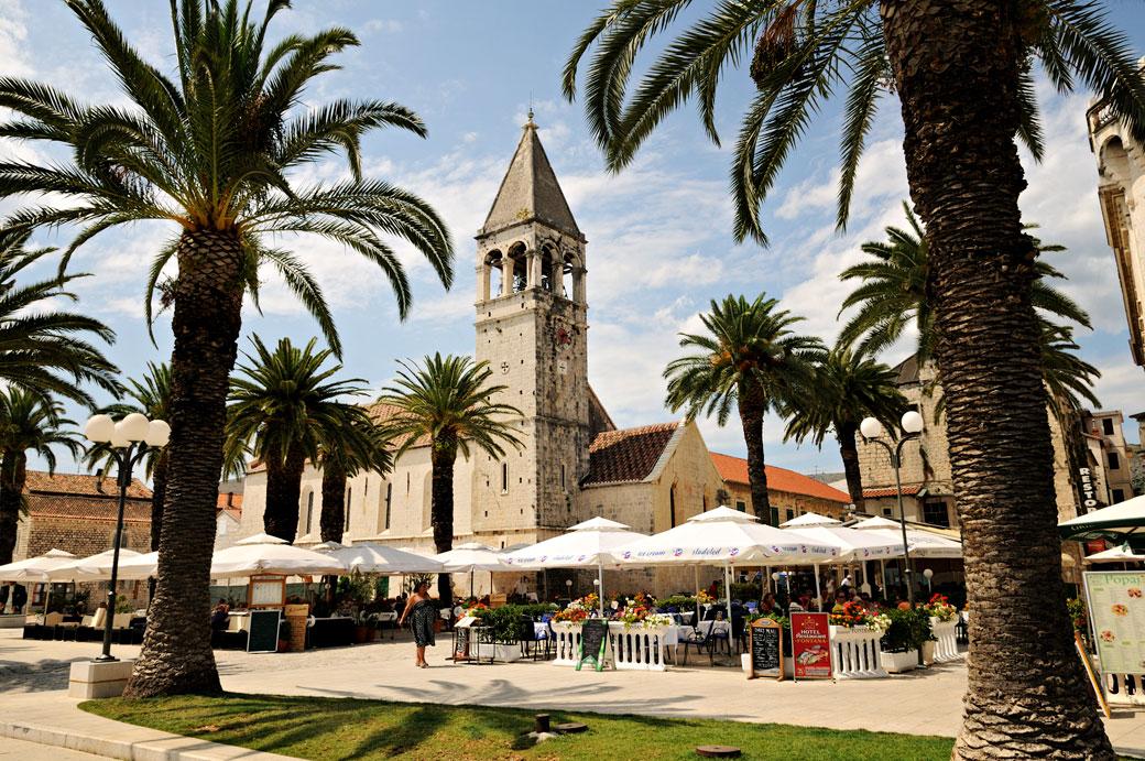 Palmiers devant l'église Saint-Dominique à Trogir, Croatie