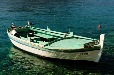 Mouette sur une barque à Primošten, Croatie