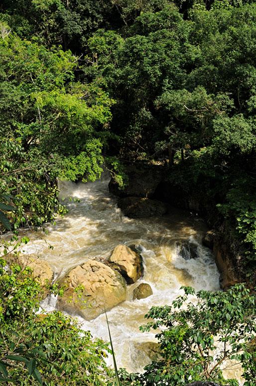 Rivière tumultueuse dans le parc national de Ba Be, Vietnam