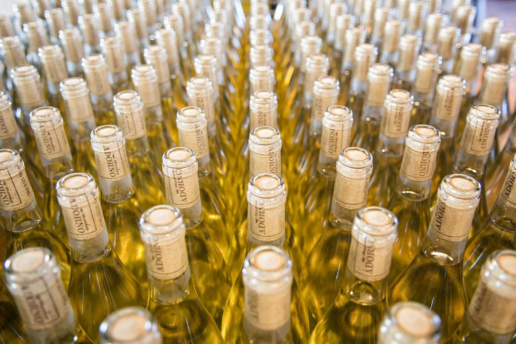 Bouteilles de vin blanc de Marchese Adorno, Italie