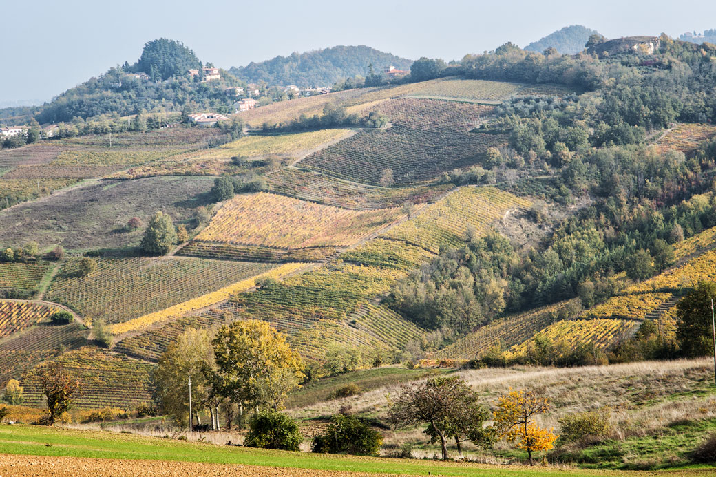 Collines et vignobles de l'Oltrepò pavese, Italie
