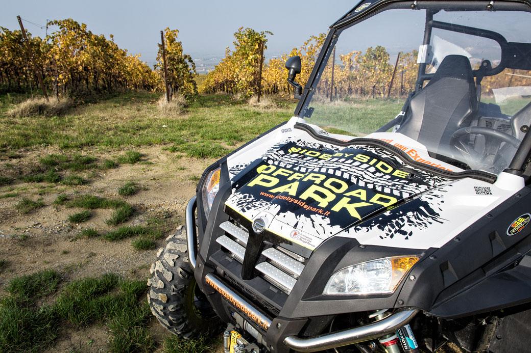 Buggy et vignes dans l'Oltrepò pavese en Lombardie, Italie