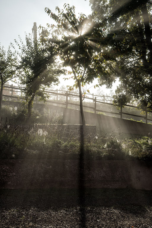Soleil matinal et brume à Varzi dans l'Oltrpò pavese, Italie