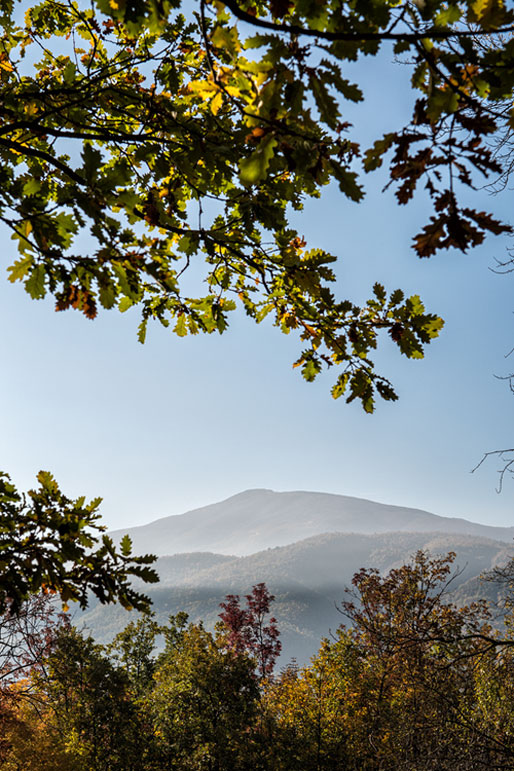Montagnes de l'Oltrepò pavese en automne, Italie