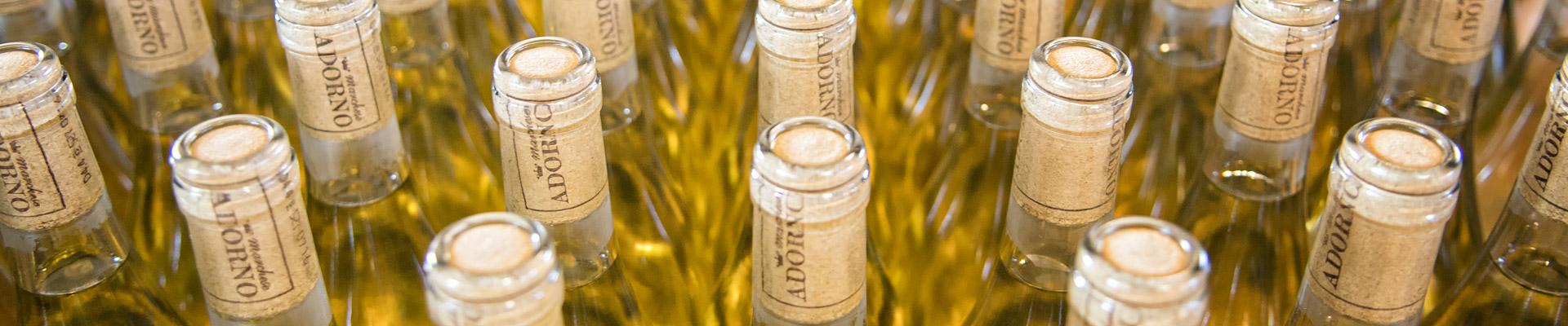 Top image vin blanc Marchese Adorno