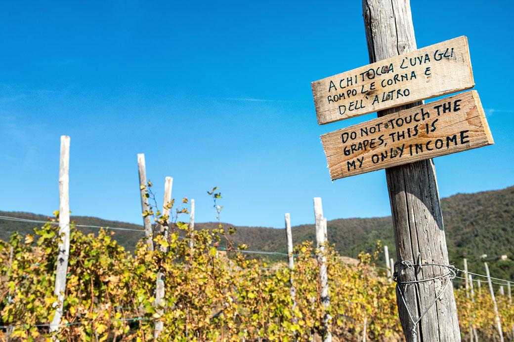 Panneau dans les vignes des Cinque Terre, Italie