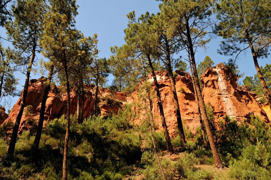 Falaises d'ocres dans une forêt de Roussillon en Luberon, France