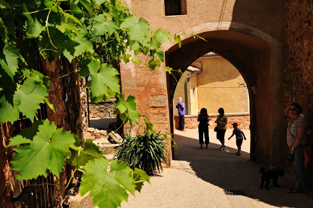Arche et feuilles de vigne à Roussillon, France