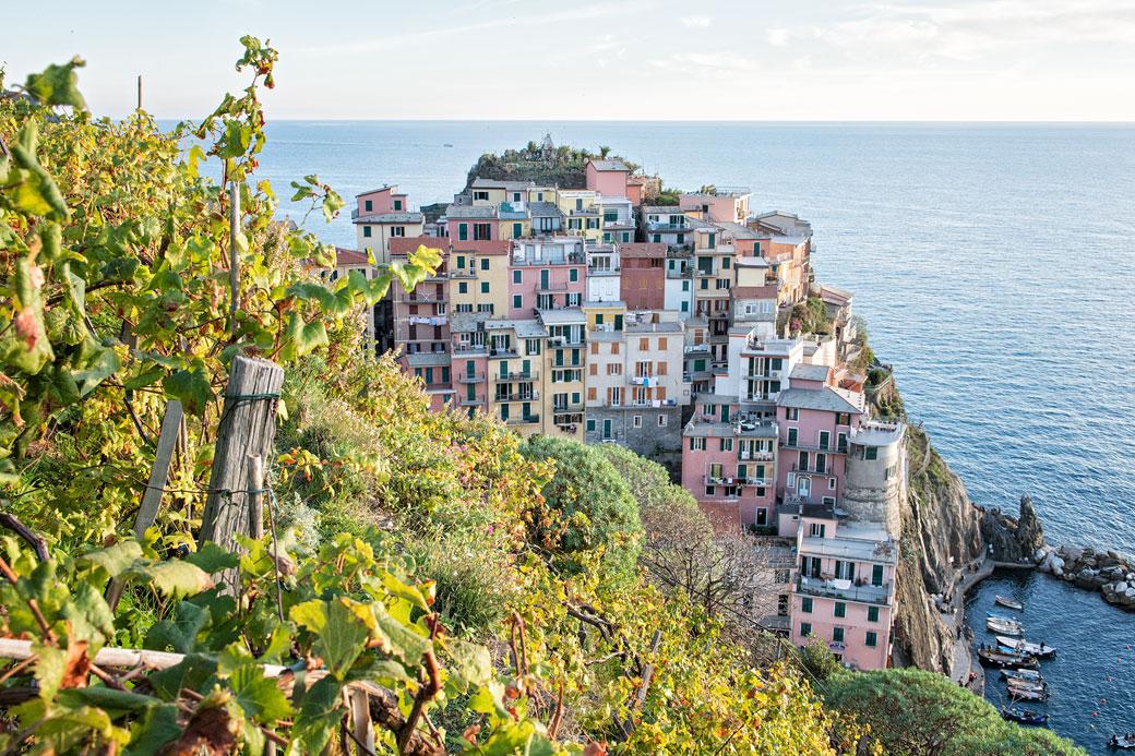 Vignes et village de Manarola dans les Cinque Terre, Italie