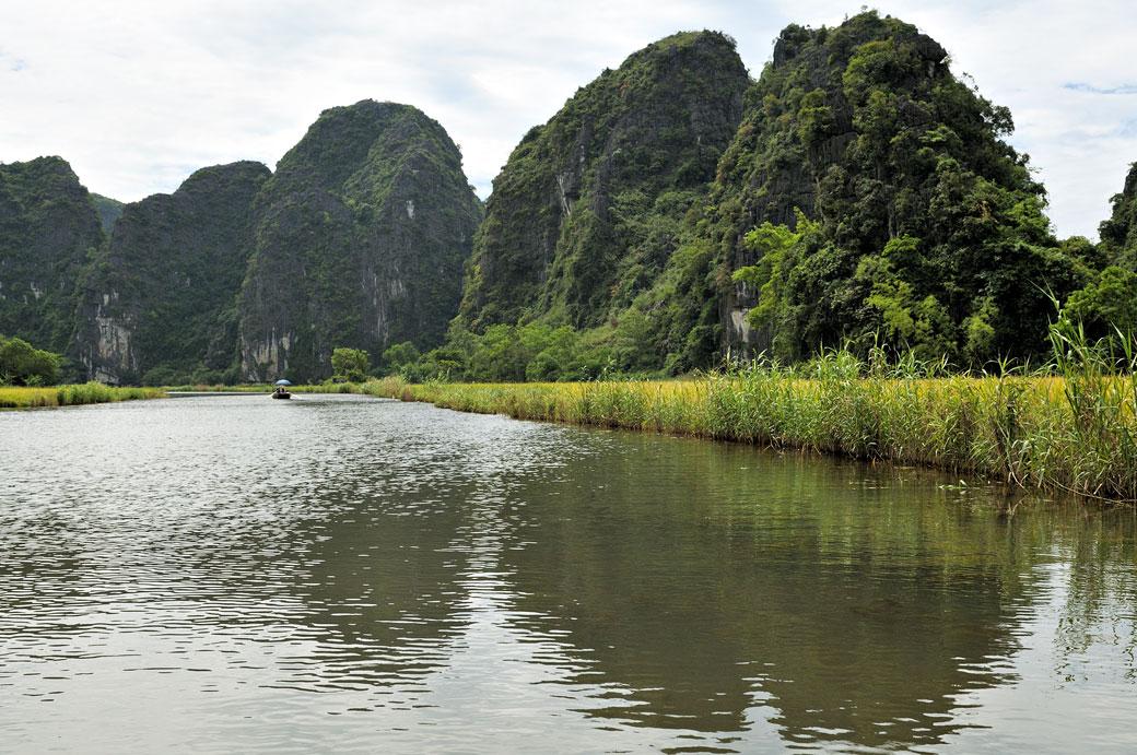 Rivière Ngo Dong et montagnes karstiques à Tam Coc, Vietnam