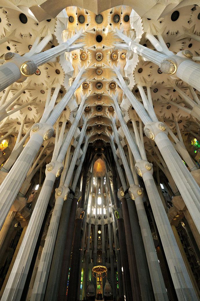 Piliers et plafond de la nef centrale de la Sagrada Família
