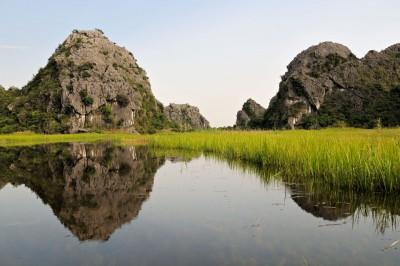 Roseaux et montagnes dans la réserve de Van Long, Vietnam