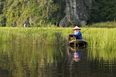 Femme sur une barque dans les roseaux de la réserve de Van Long