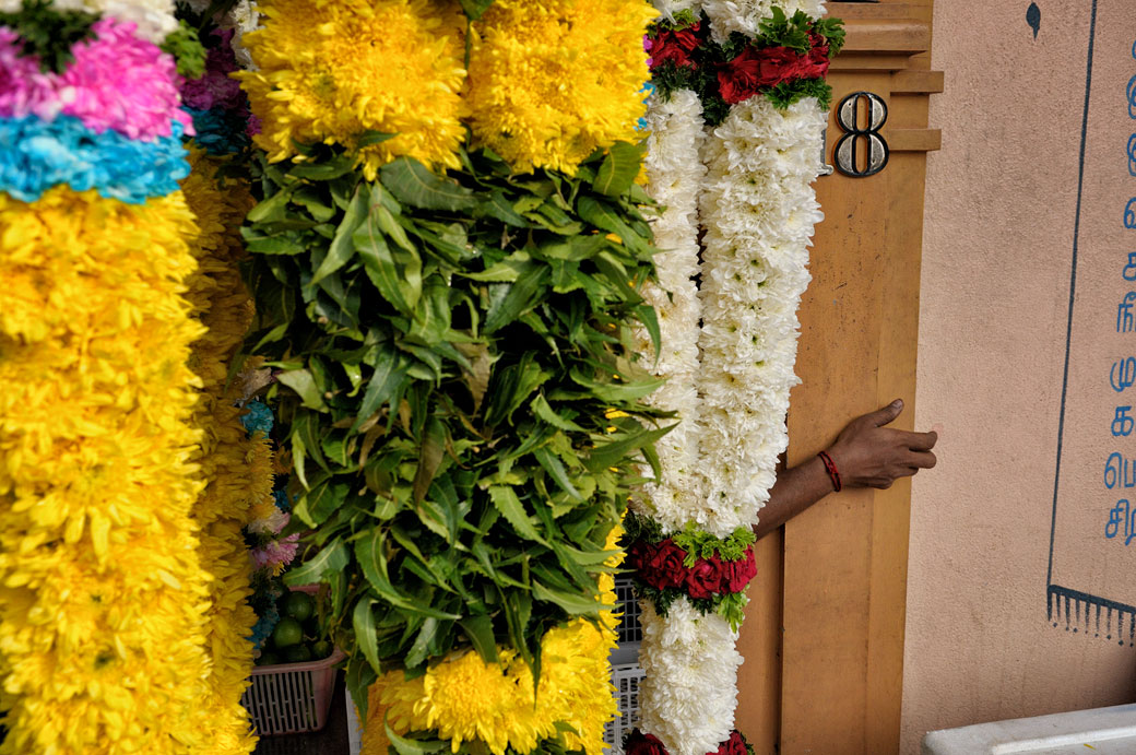 Fleurs et main à Little India à Kuala Lumpur, Malaisie