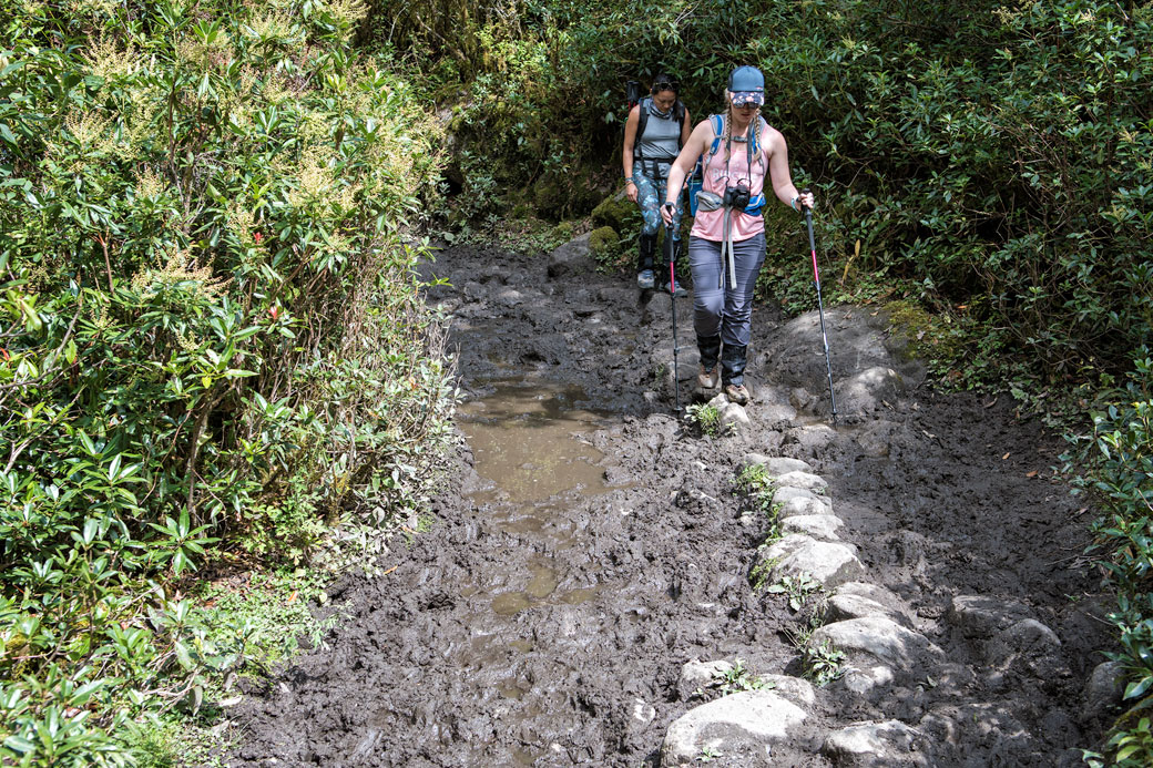 Chemin boueux entre Shana et Thongo Zampa, Bhoutan