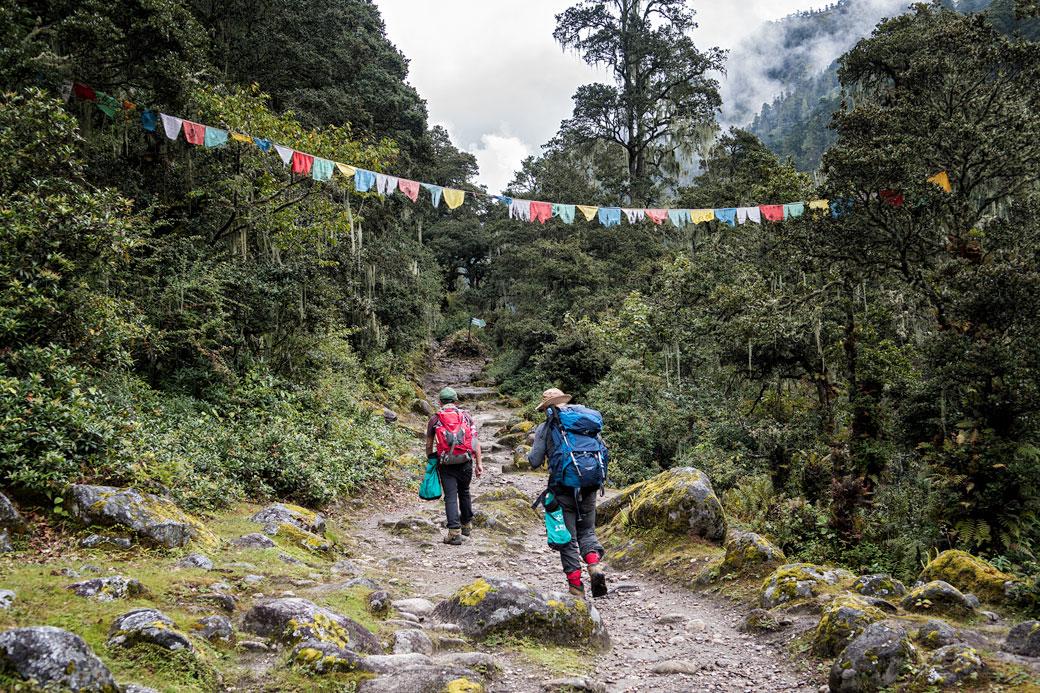Forêt et drapeaux de prières en route pour Soi Thangthangkha, Bhoutan