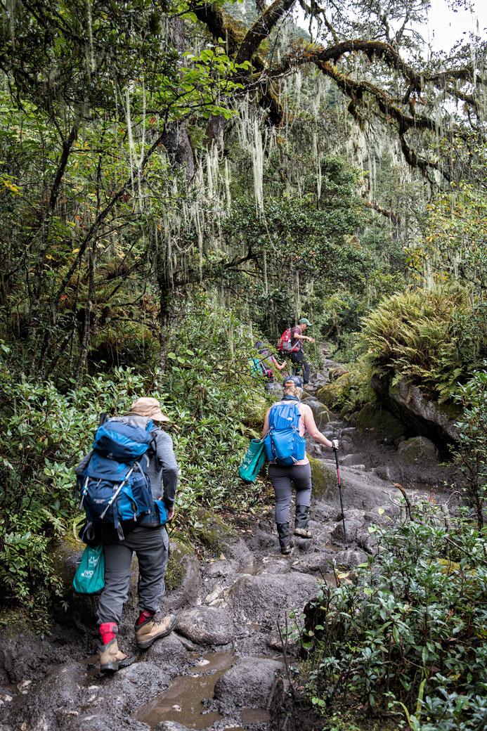Sentier rocailleux dans la forêt en route pour Soi Thangthangkha, Bhoutan