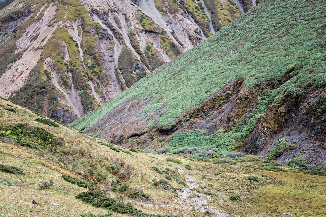 Vallée mystérieuse en route pour Lingshi, Bhoutan