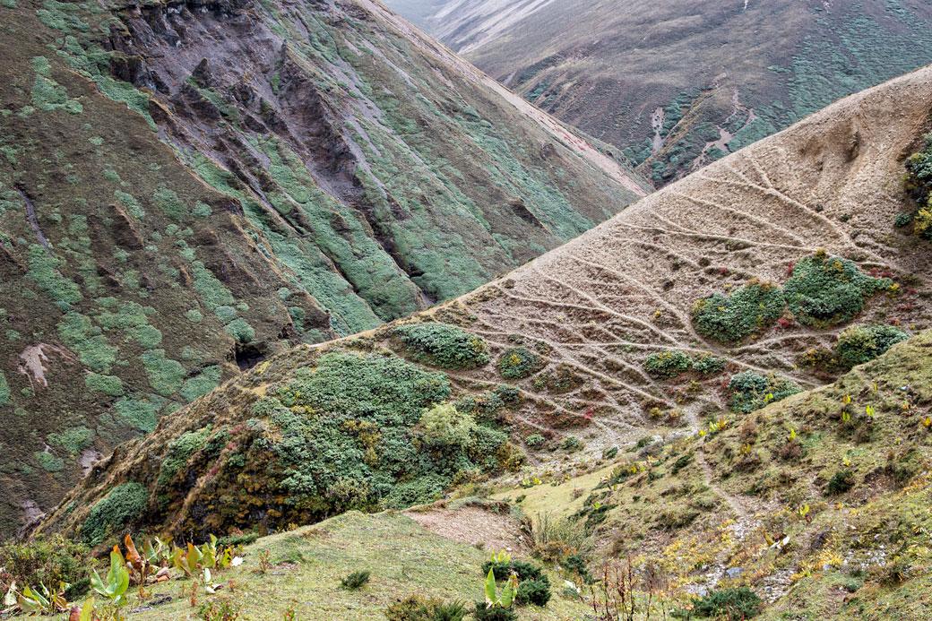 Vallée colorée entre le col de Nyile La et Lingshi, Bhoutan
