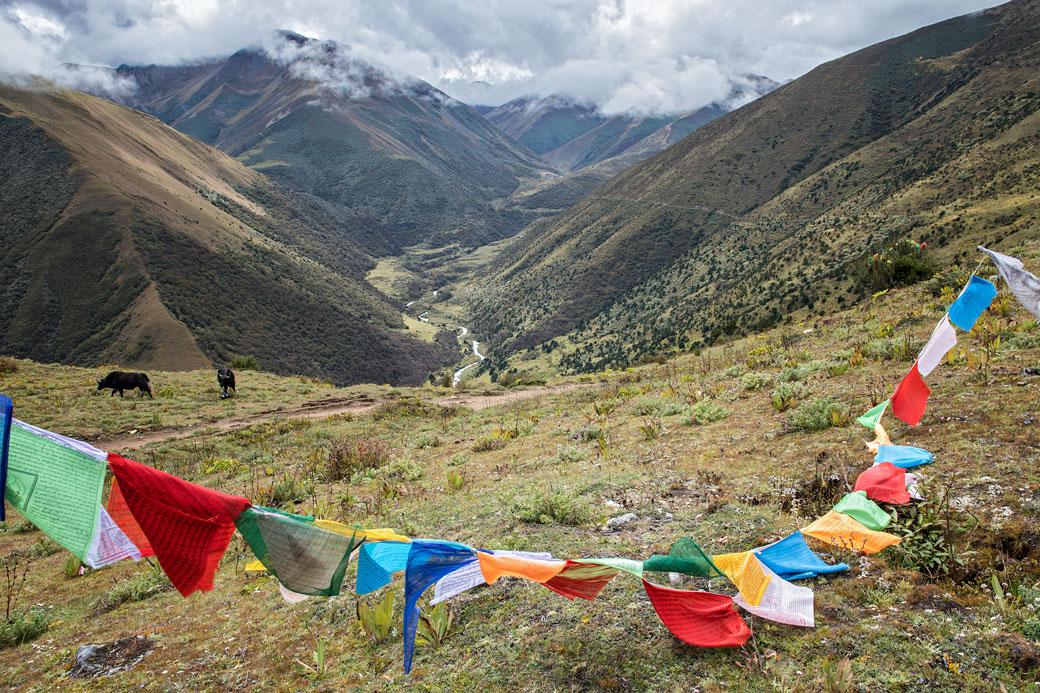 Drapeaux de prières entre Lingshi et Chebisa, Bhoutan