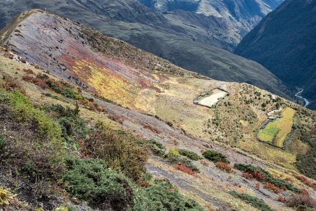 Paysage près du col de Gombu La, Bhoutan