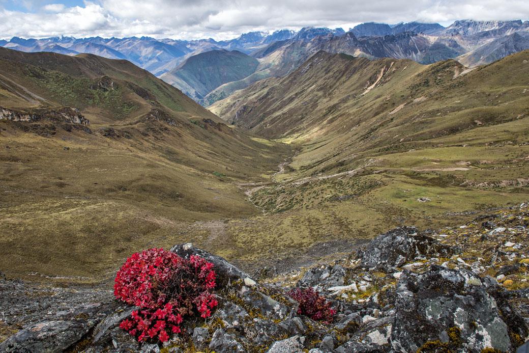 Panorama depuis le col de Jare La, Bhoutan