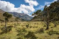 Vallée d'altitude entre Jare La et Robluthang, Bhoutan