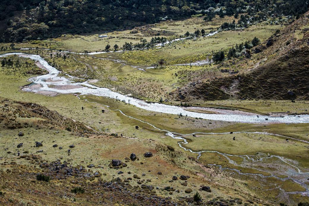 Multiples rivières dans une vallée près de Robluthang, Bhoutan