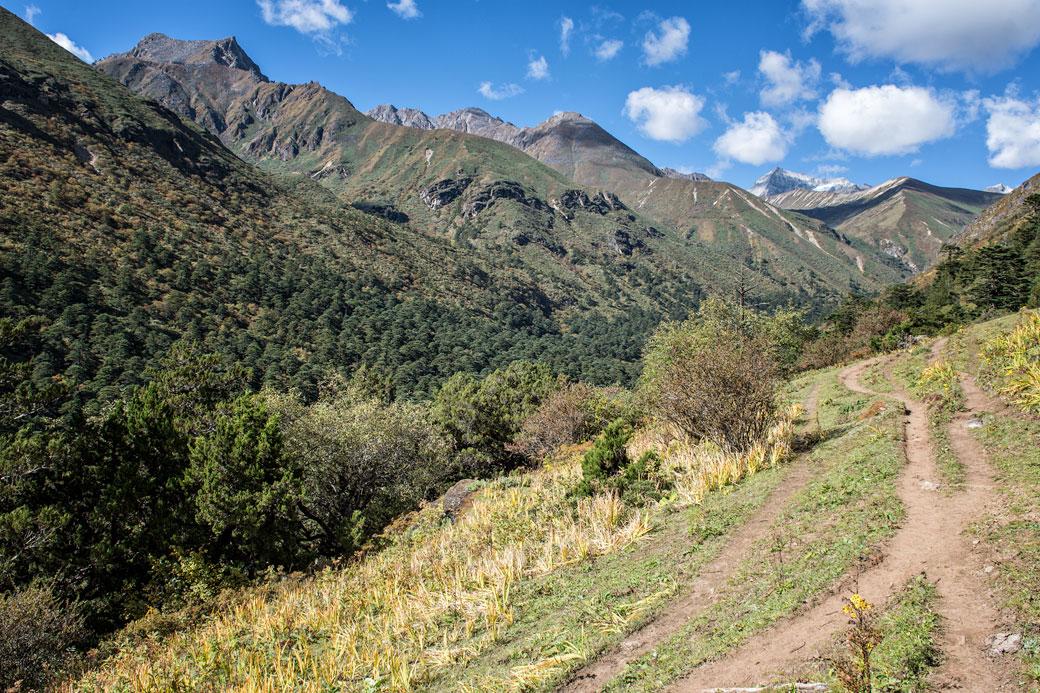 Sentier entre Lemithang et Laya, Bhoutan