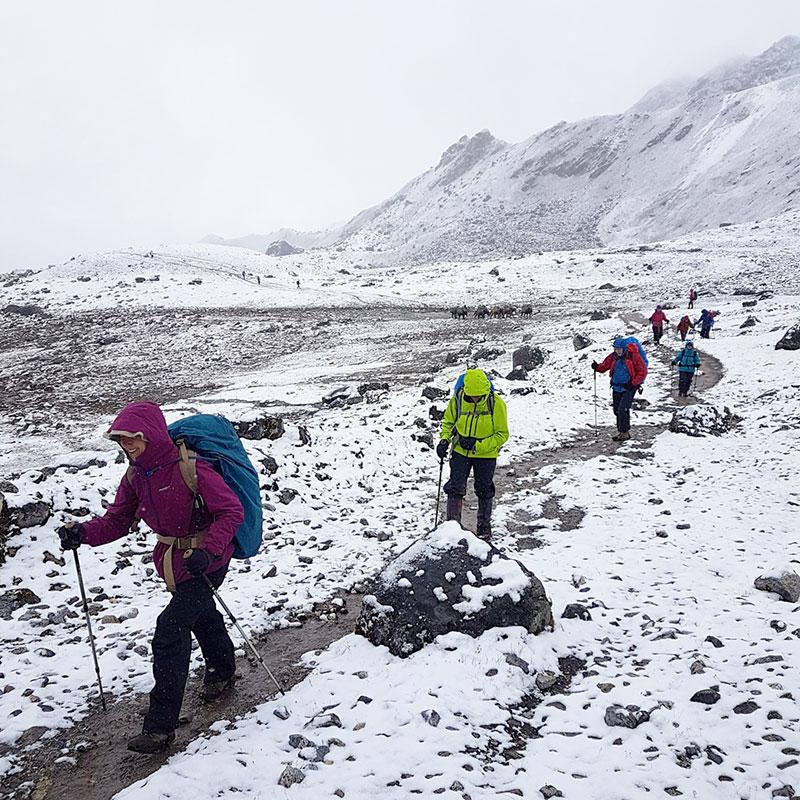 Trekkeurs en route pour le col de Karakachu La, Bhoutan