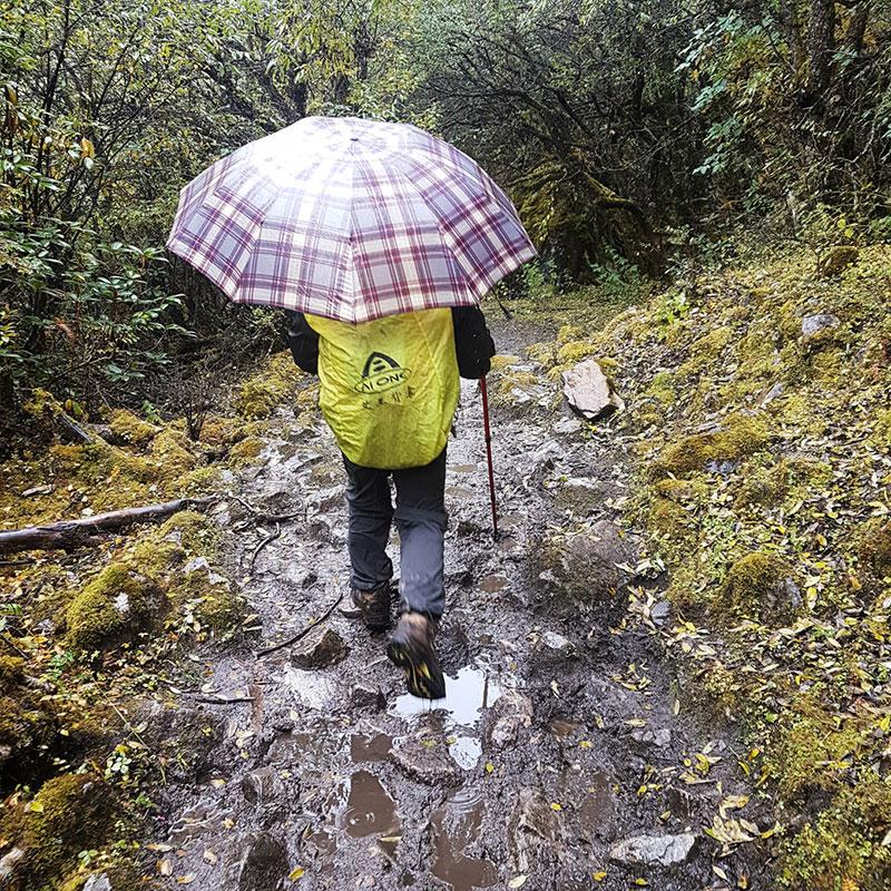 Sentier forestier boueux en route pour Tarina, Bhoutan