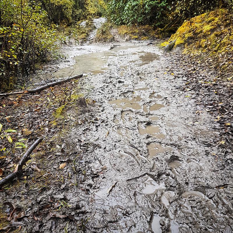 Sentier de boue en route pour Tarina, Bhoutan